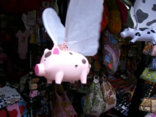 Flying pig 02