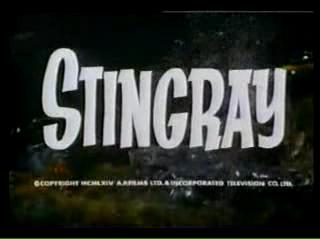 Stingray YT 06