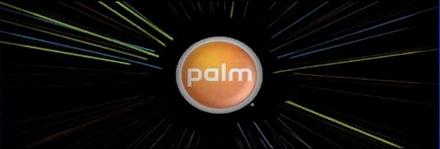 palmpromo03.jpg